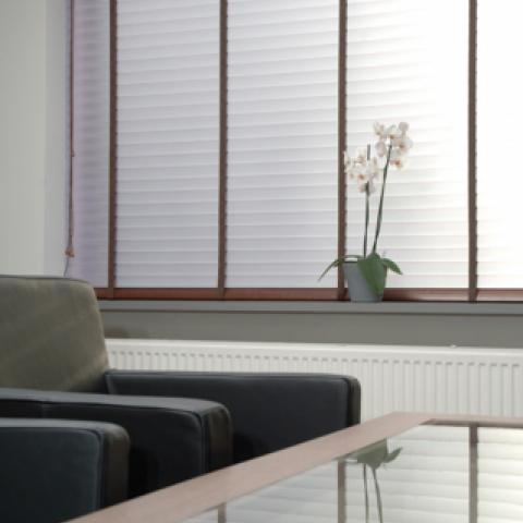 Horizontal synthetic blinds